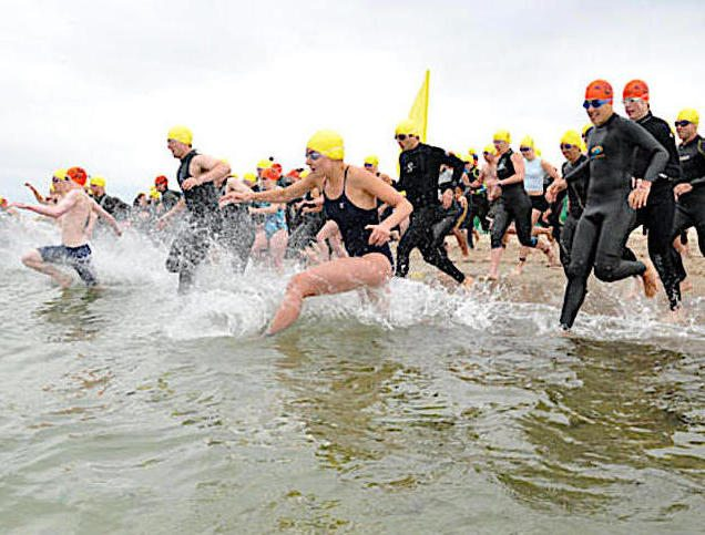 Swimmers entering the water at at NEEE race can feel confident in their safety.